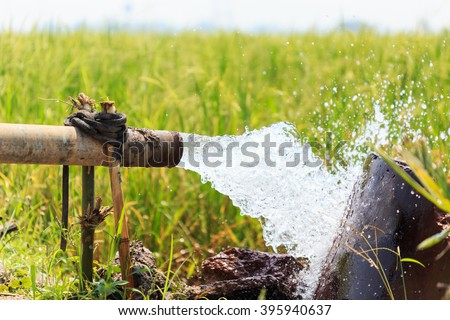 Water flow from large pump tube in rice field in central of Thailand, Focus on tube