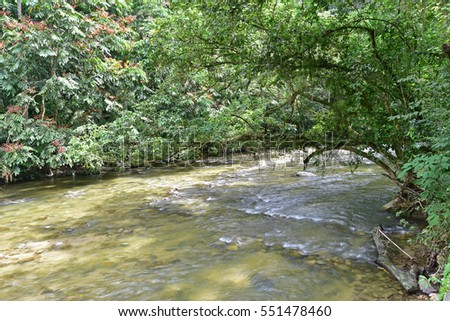 Water flowing in small river