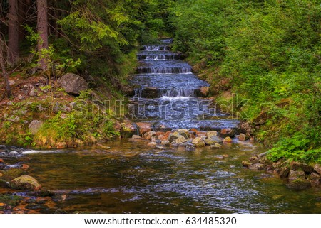 Water flows down the cascade of stones among the lush forest vegetation.