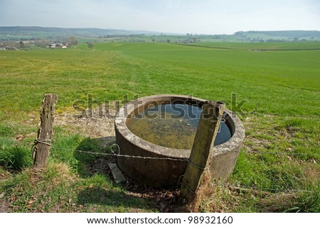 Water for cattle and barbed wire in spring