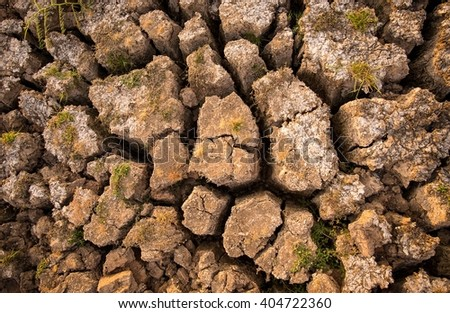 Water lacking soil in summer - stock photo