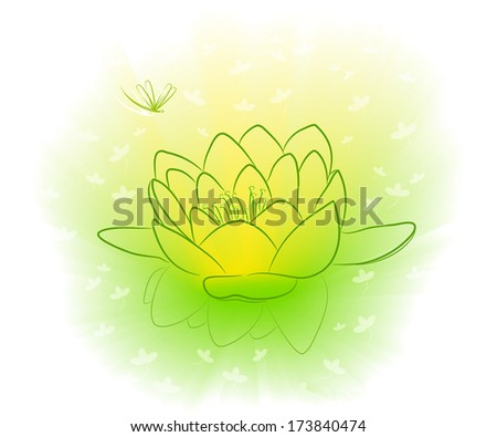 Water-lily in a green pond and a dragonfly. Beams of the sun shine a flower.  - stock photo