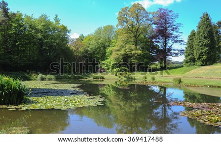 Water Lily Pond near the Rural Village of Arlington in North Devon, England, UK.