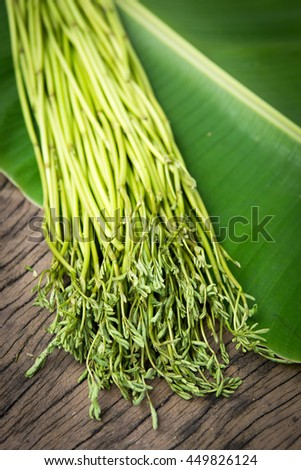 Water minosa on banana leaf  and wood background selective focus, Copy space for adding your content. Cooking ingredient - stock photo