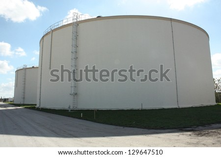 water plant - stock photo