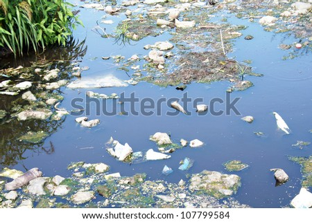 Water pollution � a lot of garbage on the river surface