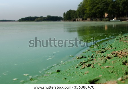 Water pollution caused by chemicals. - stock photo