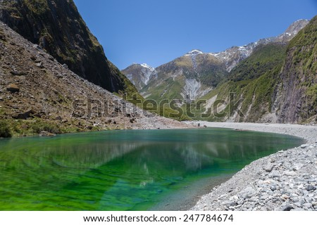 Water pond filled with vivid green algae located near the famous Fox Glacier, South Island, New Zealand. - stock photo