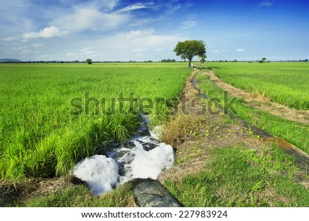 water pump to rice field - stock photo