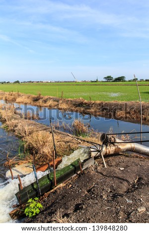 Water pump working at the rice field and sky