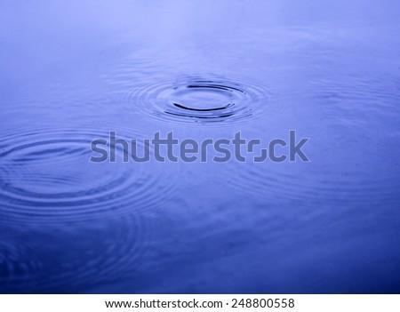 Water ripples, rain - stock photo