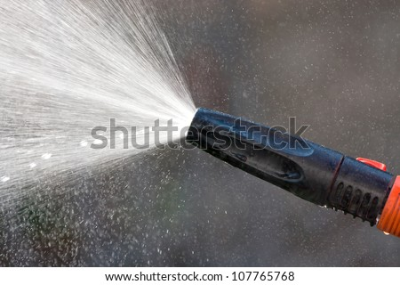 Water spraying from a garden hose - stock photo