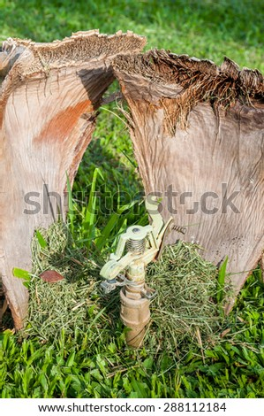 Water sprinkler with drought coconut leaf - stock photo