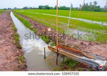 Water to the field. - stock photo