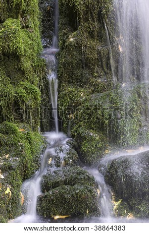 Water trickles down the moss covered rocks by a waterfall.