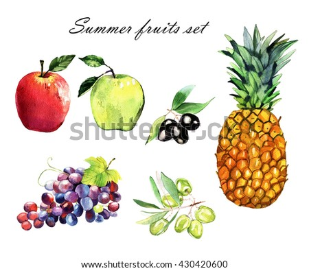watercolor apples, grapes, pineapple, olive , hand painted illustration isolated on white background - stock photo
