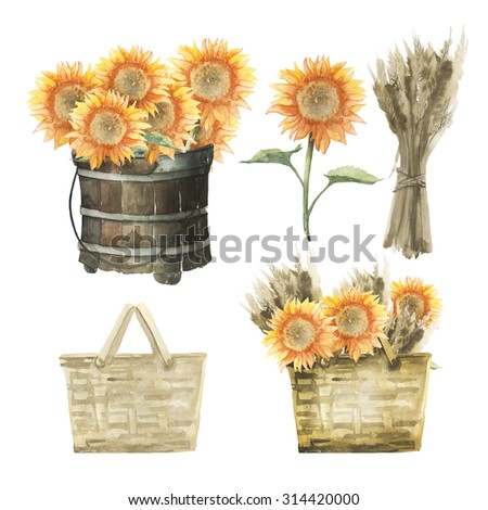 Watercolor autumn rustic set: sunflowers, basket, a sheaf of wheat, a wooden bucket - stock photo