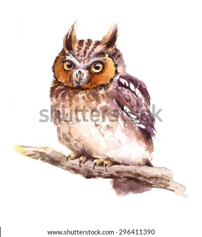 Watercolor Baby Screech Owl Sitting on the Branch Hand Painted Wild Bird Illustration isolated on white background - stock photo