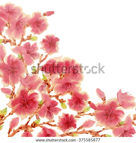 Watercolor background branch Flowering almond . Beautiful background for your text.