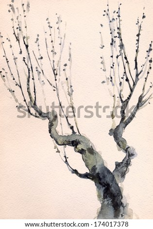 Watercolor background in the style of Japanese painting. Bare branches of an old tree  - stock photo