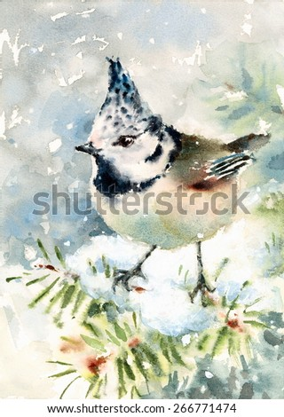 Watercolor Bird Crested Tit Winter Snow Hand Painted Illustration