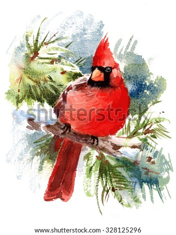 Watercolor bird red cardinal winter christmas stock for Painted christmas cards