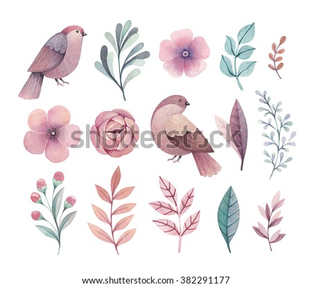 Watercolor birds and flowers. Perfect for greeting cards or invitations
