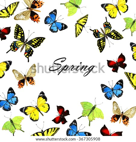 watercolor butterfly background, hand painted illustration