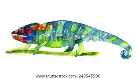 Watercolor chameleon illustration - stock photo
