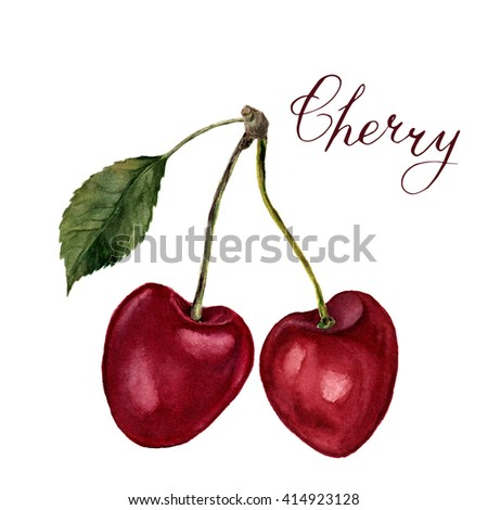 """Watercolor cherries with leaf, lettering """"Cherry"""". Hand drawn food illustration on white background. For design, textile and background. Realistic botanical illustration. - stock photo"""