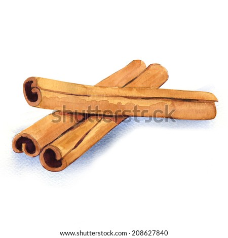 watercolor cinnamon isolated on white background - stock photo