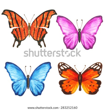 Watercolor Colorful Butterflies Set Closeup Isolated Stock ...