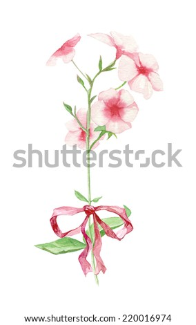 Watercolor colorful flower set with pink hydrangea and red bow - stock photo