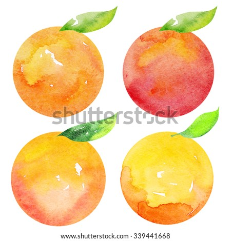 Watercolor colorful mandarin, tangerine, mandarin oranges with leaves. Hand drawn icon. Isolated on white background. Watercolor stains, splashes