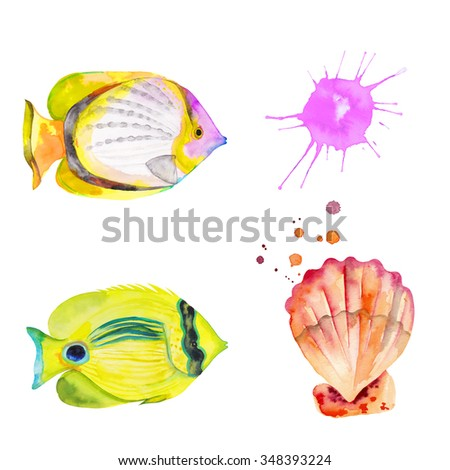 Watercolor colorful set fishes and shell. Watercolor splashes splatters. Hand drawn. Butterfly Fish - stock photo