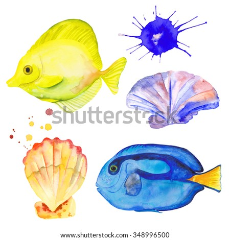 Watercolor colorful set fishes and shells. Watercolor splashes splatters. Hand drawn. Blue Tang Fish. Yellow Tang Fish - stock photo