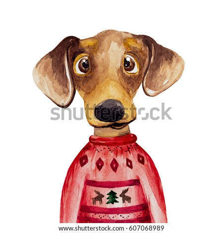 Watercolor Dachshund Dog Sweater 2018 Chinese Stock Illustration ...
