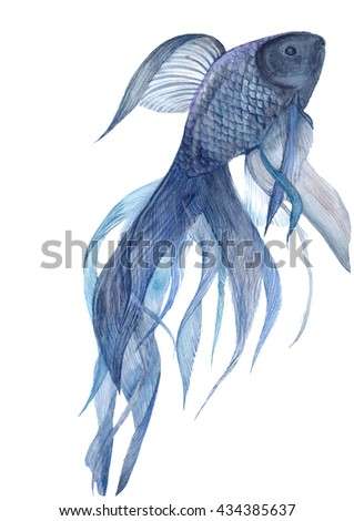 Watercolor Dark fish