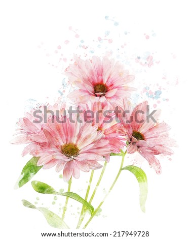 Watercolor Digital Painting Of Chrysanthemum - stock photo