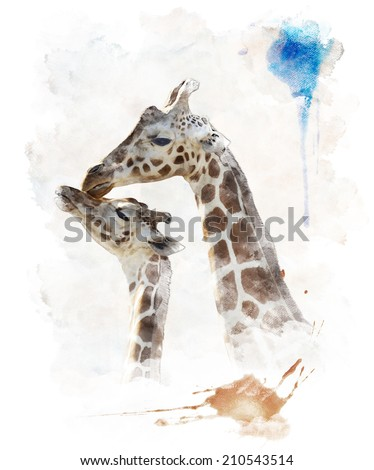 Watercolor Digital Painting Of  Mother And Baby Giraffes - stock photo