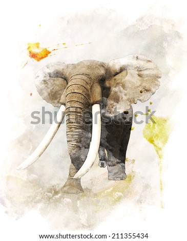 Watercolor Digital Painting Of   Walking Elephant - stock photo
