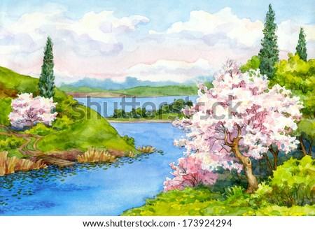 Watercolor drawing. Flowering trees on the banks of the winding river