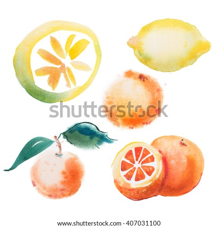 watercolor drawing set of tropical fruits, citrus aquarelle painting on white background - stock photo