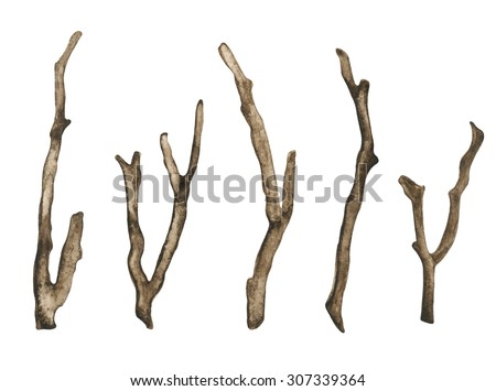 Watercolor dry tree branches, twigs set closeup isolated on white background. Hand painting on paper - stock photo