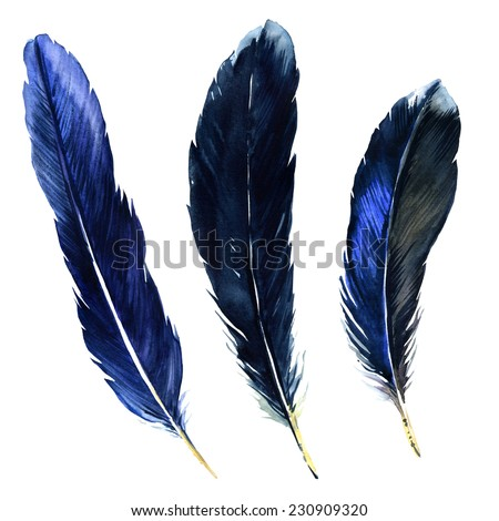 Watercolor feathers - stock photo