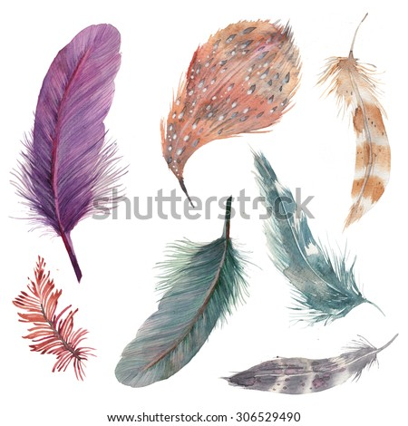 Watercolor feathers collection. Hand drawn artistic multicolor feather set isolated on white background. Seven various bird feathers, raster illustrations - stock photo