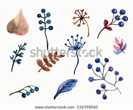 Watercolor floral collection with blue  and brown colored flowers, leaves, branches, berries.
