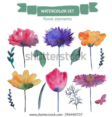 Watercolor floral elements. Collection of hand drawn flowers. Set of beautiful decorative plants on white background.