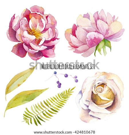 Watercolor floral elements set. Vintage leaves, peony flowers, rose, berry and fern branch. Isolated on white background hand drawn design illustration - stock photo