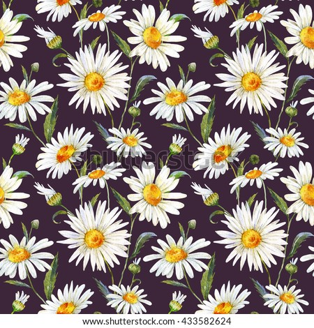 watercolor floral pattern daisy, white gentle chamomile, medicinal plant, seamless pattern, black background - stock photo